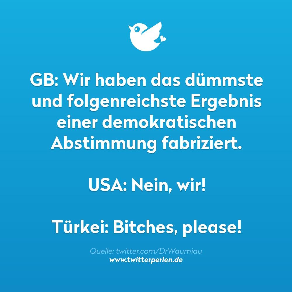 GB: Wir haben das dümmste und folgenreichste Ergebnis einer demokratischen Abstimmung fabriziert.USA: Nein, wir!Türkei: Bitches, please!