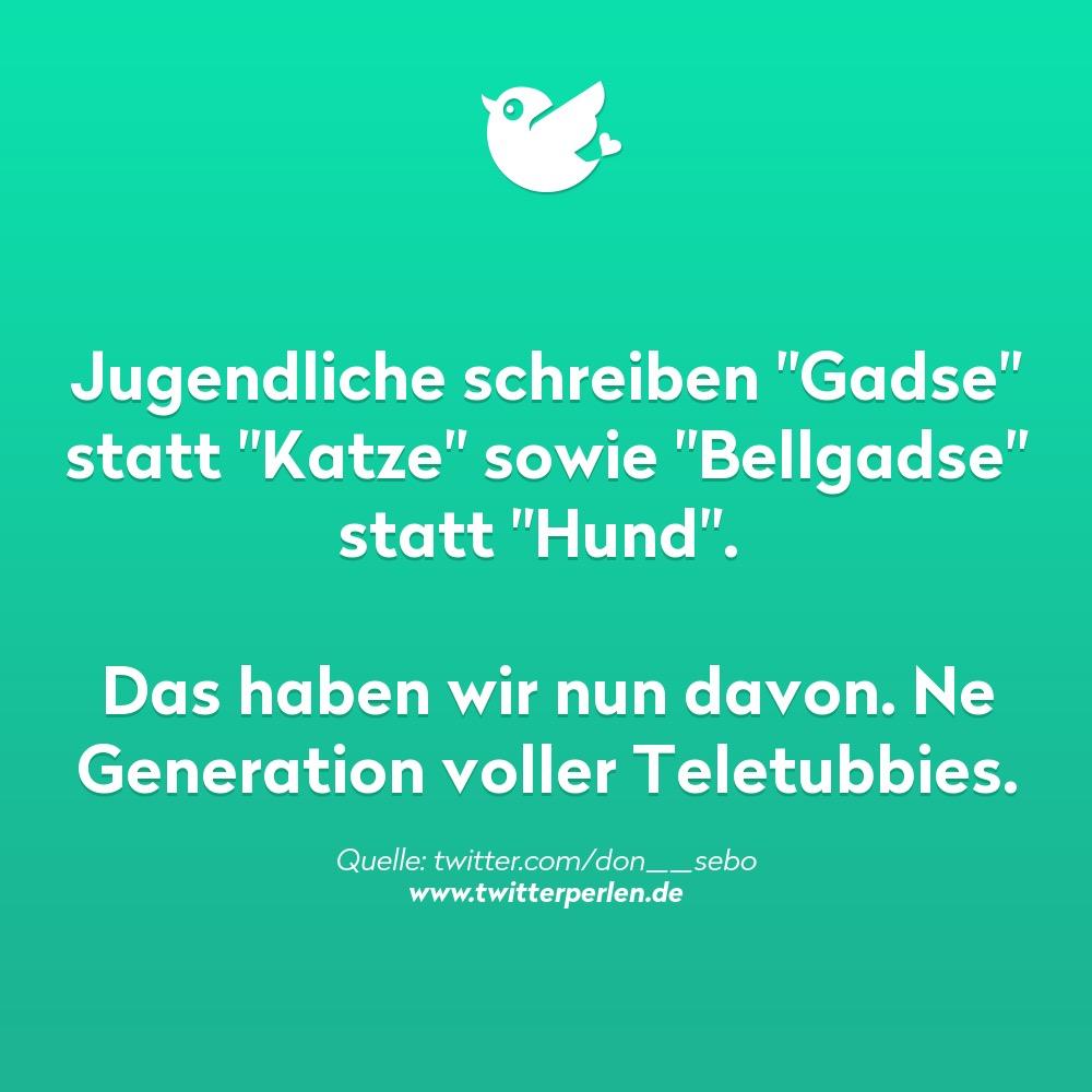 """Jugendliche schreiben """"Gadse"""" statt """"Katze"""" sowie """"Bellgadse"""" statt """"Hund"""".   Das haben wir nun davon. Ne Generation voller Teletubbies."""