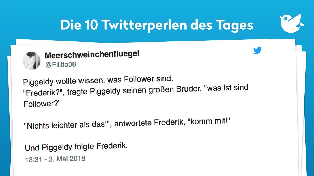 """Piggeldy wollte wissen, was Follower sind. """"Frederik?"""", fragte Piggeldy seinen großen Bruder, """"was ist sind Follower?"""" """"Nichts leichter als das!"""", antwortete Frederik, """"komm mit!"""" Und Piggeldy folgte Frederik."""