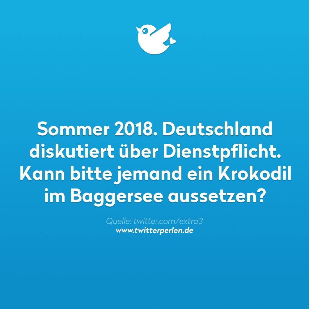 Sommer 2018. Deutschland diskutiert über #Dienstpflicht. Kann bitte jemand ein Krokodil im Baggersee aussetzen?