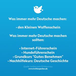 """Was immer mehr Deutsche machen: • den Kleinen Waffenschein Was immer mehr Deutsche machen sollten: • Internet-Führerschein • Hundeführerschein • Grundkurs """"Gutes Benehmen"""" • Nachhilfekurs: Deutsche Geschichte"""