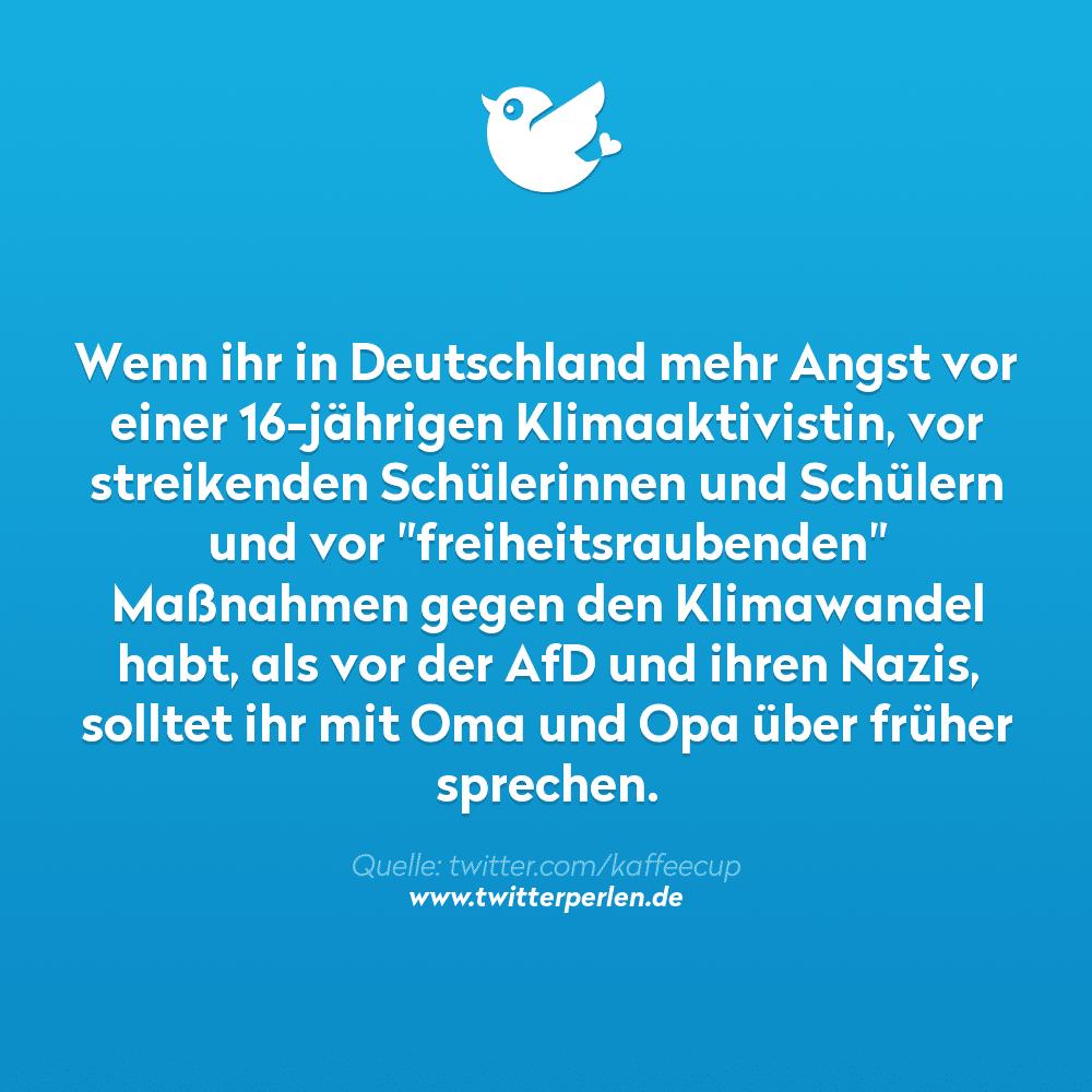 """Wenn ihr in Deutschland mehr Angst vor einer 16-jährigen Klimaaktivistin, vor streikenden Schülerinnen und Schülern und vor """"freiheitsraubenden"""" Maßnahmen gegen den Klimawandel habt, als vor der AfD und ihren Nazis, solltet ihr mit Oma und Opa über früher sprechen."""